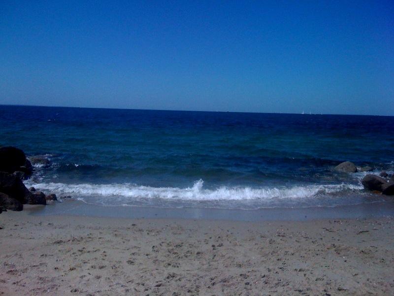 scraggy neck beach 2