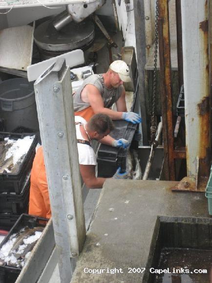unloading cod