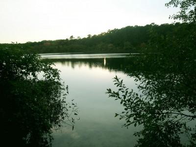 Pond View from Private Beach wellfleet-rare-cape-cod-national-seashore-rental-on-pond_Susanna Deiss